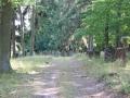 Bauerbach Judenfriedhof